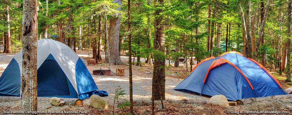Acadia National Park Camping Guide